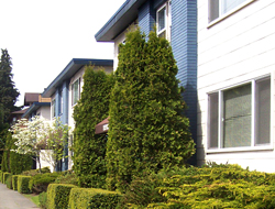 Tour Seattle's Best Green Lake South Shore Apartments