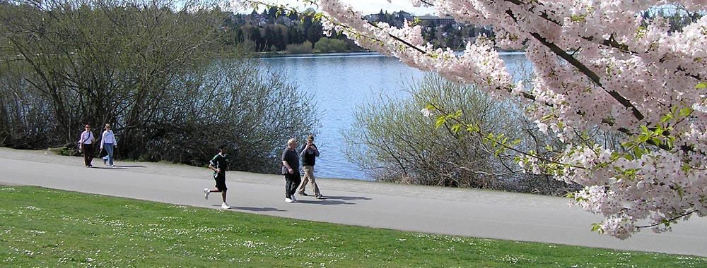 Best Apartments Seattle greenlake south shore apartments – seattle's best apartments